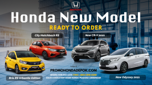 Read more about the article HONDA ODYSSEY
